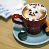 Foto Catpucinno di Mokka Coffee Cabana