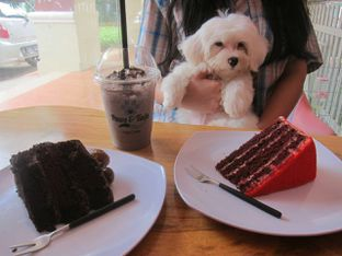 Foto 7 - Makanan di Paws & Tails Dog Cafe oleh Olivia