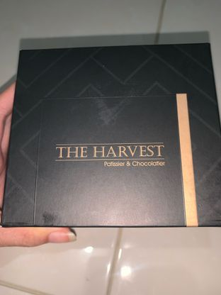 Foto review The Harvest oleh Ester Kristina 3