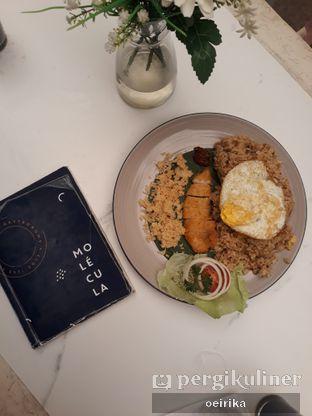 Foto 3 - Makanan(Galangal fried rice) di Molecula oleh Oeirika L Fernanda B