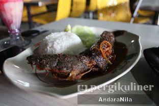 Foto review Pecel Lele Lela oleh AndaraNila  1