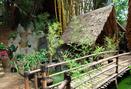 Foto Interior di Kebon Awi Kaffee