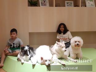 Foto 7 - Interior di Boogie Doggie Pet Cafe oleh Ladyonaf @placetogoandeat