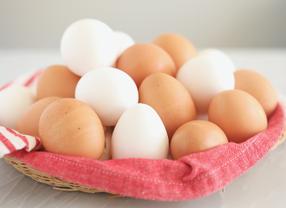 Ini Dia 5 Fungsi Telur dalam Dunia Perkulineran