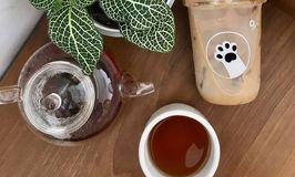 Oi Coffee & Eatery