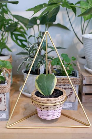 Foto 22 - Interior di Living with LOF Plants & Kitchen oleh Deasy Lim
