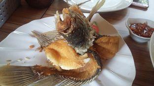 Foto 3 - Makanan di Pondok Ikan Gurame oleh Erika  Amandasari