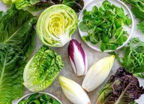 Ini 5 Jenis Selada di Dunia yang Paling Banyak Digunakan untuk Salad