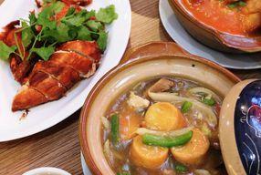 Foto Sapo Oriental