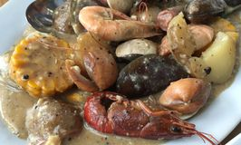 Cranky Crab