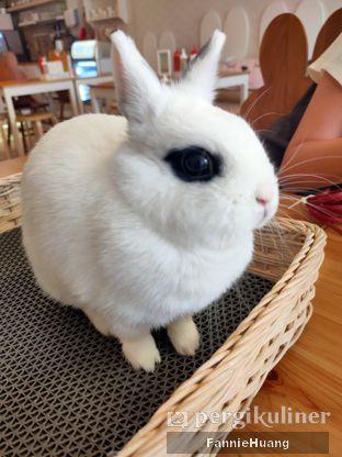 Foto 4 - Interior di MyBunBun Rabbit Cafe oleh Fannie Huang||@fannie599