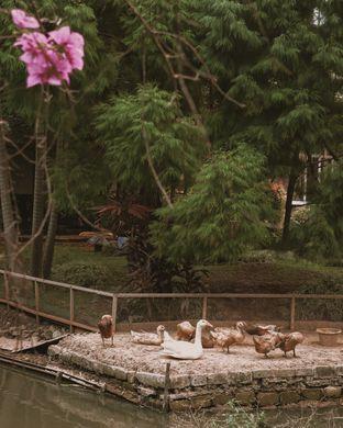 Foto 11 - Eksterior di Susy Garden oleh Della Ayu