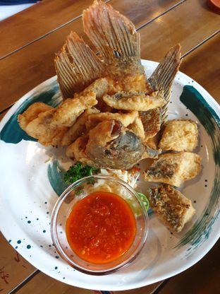 Foto 3 - Makanan di Medja oleh Pengembara Rasa