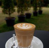 Foto Hot Latte di Masagi Koffee