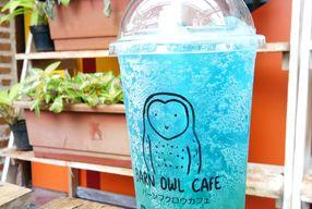 Foto Barn Owl Cafe