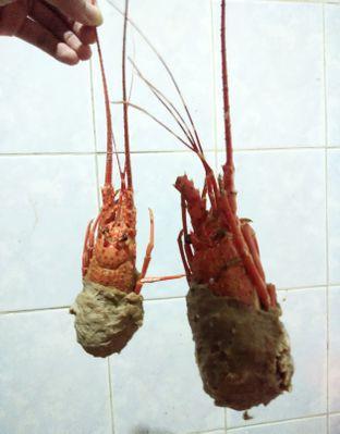 Foto 1 - Makanan di Bakso Lobster Permata oleh Devi Renat