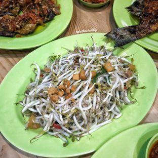 Foto 6 - Makanan(Taoge ikan asin) di Ayam & Seafood EGP oleh Stellachubby