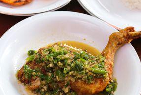 Foto Ayam Pedos
