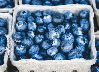 Ini 5 Buah Berwarna Biru yang Ternyata Bikin Tubuh Sehat!