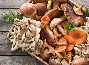 4 Tips Memilih Jamur yang Oke untuk Dikonsumsi
