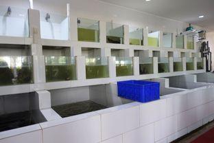 Foto 7 - Interior di Sentosa Seafood oleh inggie @makandll
