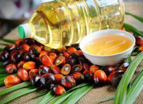 5 Jenis Minyak Goreng yang Paling Banyak Digunakan di Pasaran