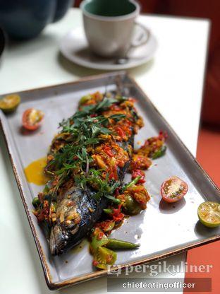 Foto 5 - Makanan(Ikan Bakar Rica) di Segundo - Hotel Monopoli oleh feedthecat