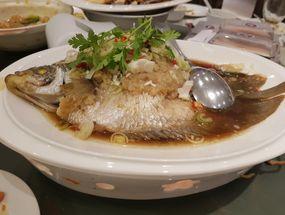 Foto Bima Chinese Cuisine