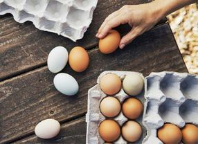 Serupa Tapi Tak Sama, Ini Bedanya Telur Bebek vs Telur Ayam