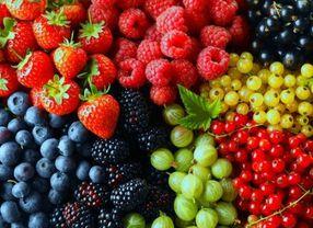 5 Makanan untuk Membersikan Paru-Paru yang Sering Terpapar Polusi Udara