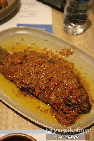 Foto review Taliwang Bali oleh Fioo   @eatingforlyfe 8