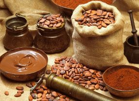 Inilah 6 Negara Penghasil Biji Kakao Terbesar di Dunia